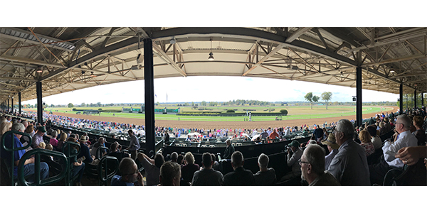 Auto Value and Bumper to Bumper's Service Center Advisory Council watched horseracing during Keeneland's fall track meet. The event took place during the council's fall meeting in Lexington, Ky.
